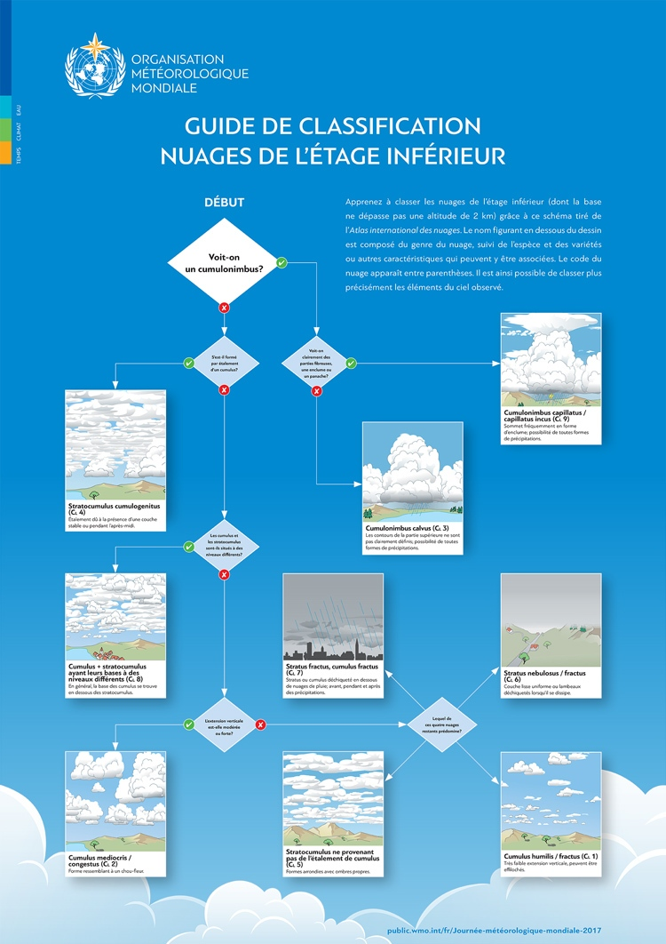 low-level-cloud-classification-img