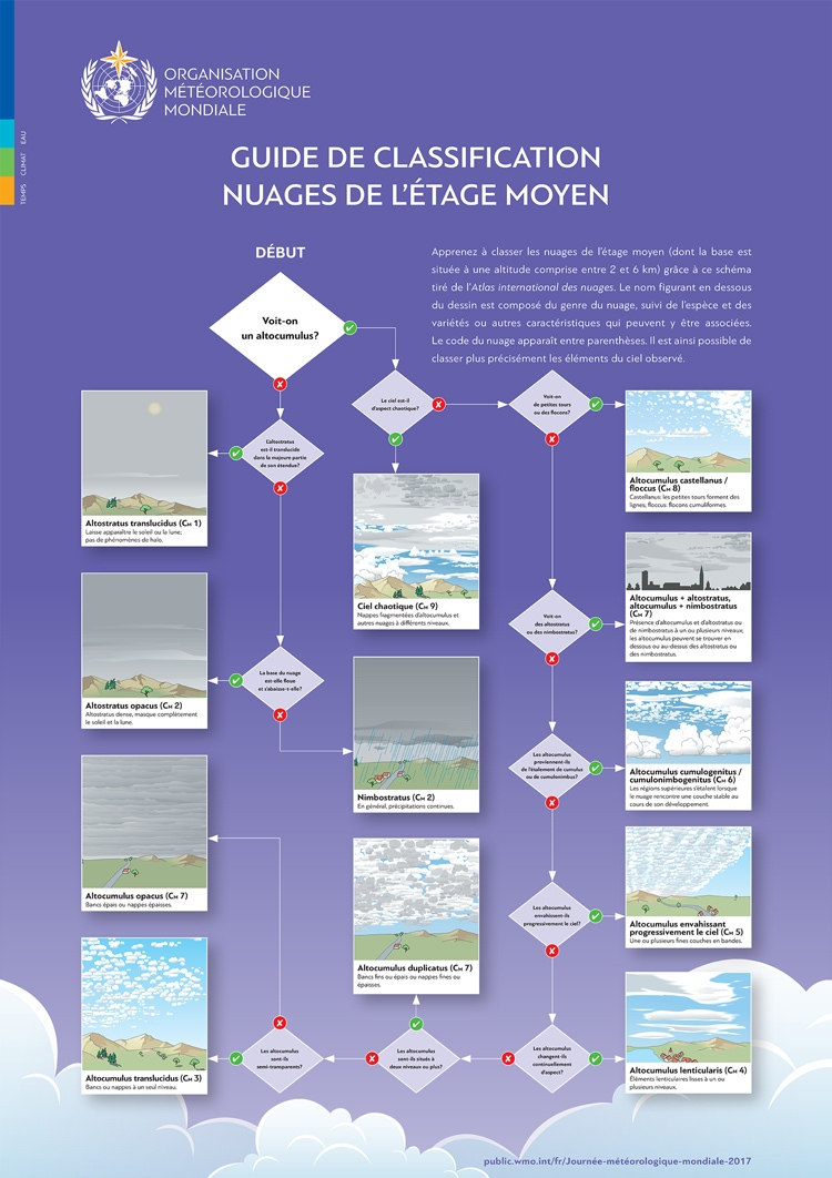 middle-level-cloud-classification-img